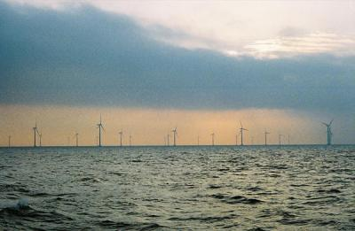 nysted wind farm