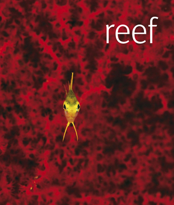 Reef the book from DK